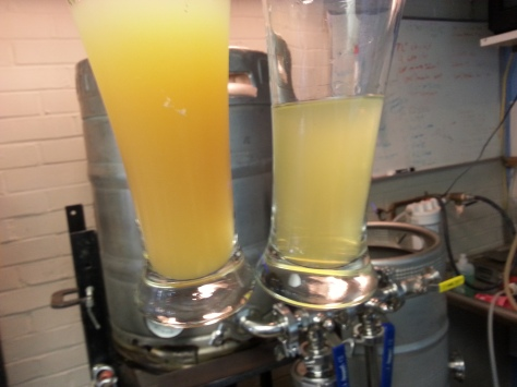 Left: Unfiltered, Right: Filtered cider to 0.35 micron nominal.