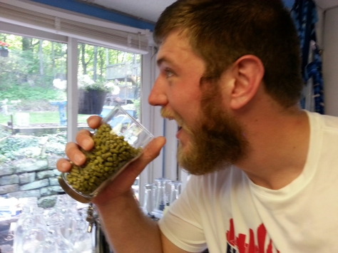 The LPA's boil aroma hop addition - lot's of Cascade.