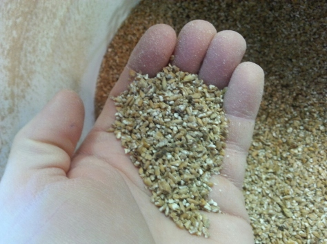 The crushed grains.  We want to make sure there are no whole grains and little 'flour'.
