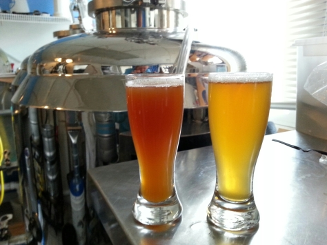 Sampling of the Amber and the Pale Ale made last week from the fermentor.